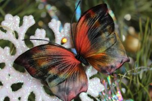 Робота Купить заколку бабочку Элли