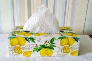 Робота Салфетница с лимончиками