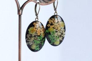 Сережки з різнокольоровим сухоцвітом на чорному фоні бронза - Опис