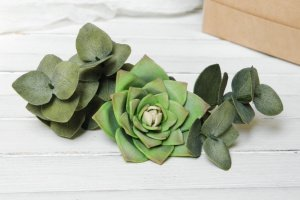 Зеленые Шпильки с суккулентом и эвкалиптом в прическу - ІНШІ РОБОТИ